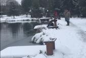 Зимняяя рыбалка_12