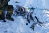 Зимняя рыбалка 2018_1