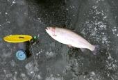 Зимняя рыбалка 2018_7