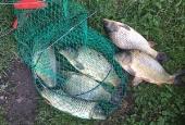 fishing2016_13